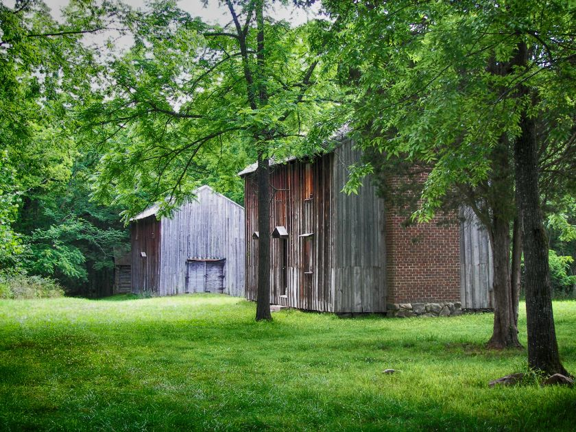 Stagville Slave Cabins