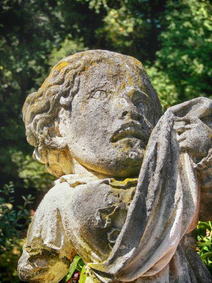 Chinquapin Sculpture 3