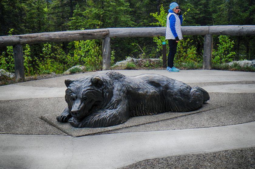 Denali Slumbering Bear