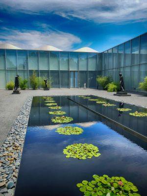 Rodan Garden