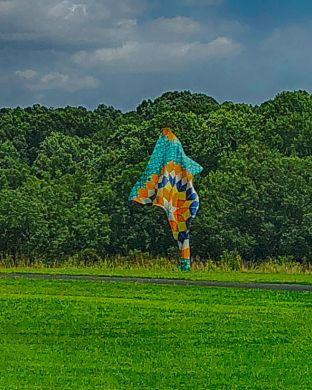 Wind Sculpture II (1)