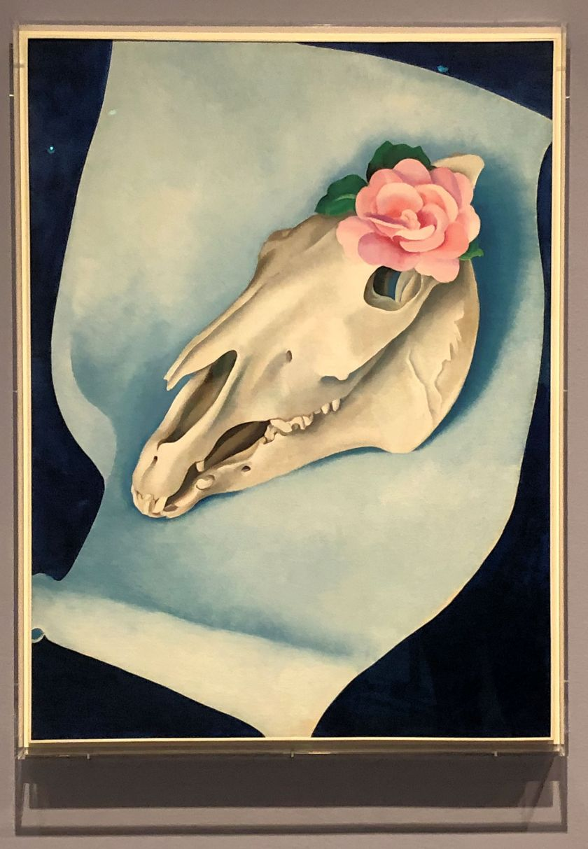 georgia o'keeffe- horse skull with pink rose