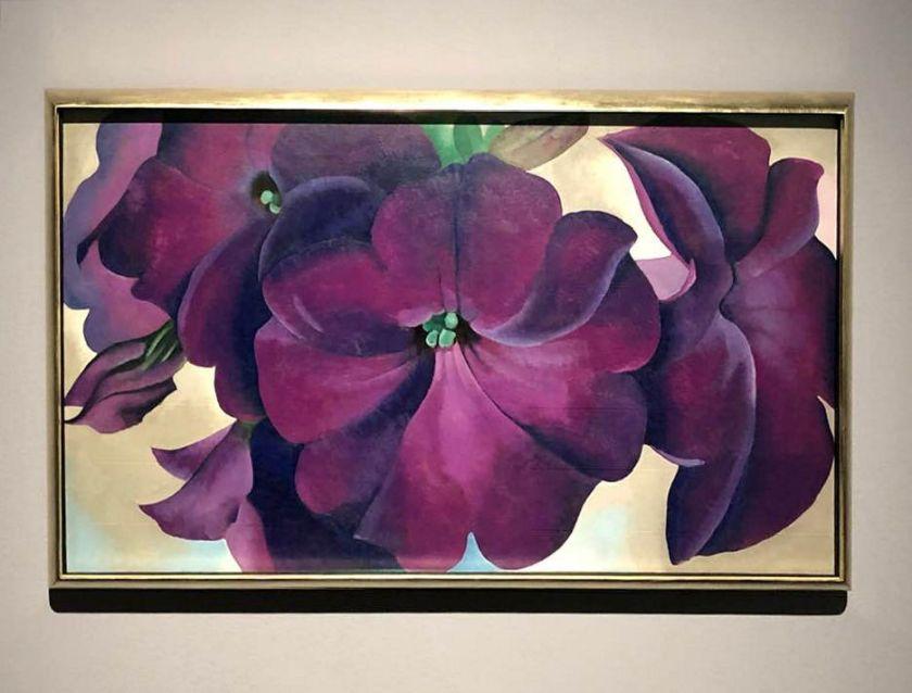 georgia o'keeffe- petunias- 1925